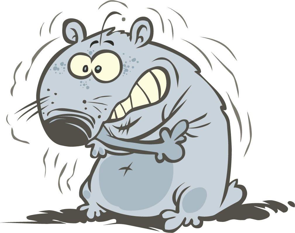 Frozen Hamster Cartoon Home Decal Vinyl Sticker 14'' X 11''