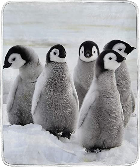 Blueangle Emperor Penguin Velvet Blanket Throw Size Luxury Bed Blanket Fuzzy Soft Blanket Microfiber Home Kitchen