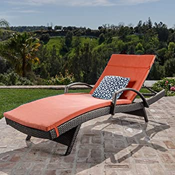 Christopher Knight Home 540 Salem Chaise Outdoor Lounge (Set Of 2)