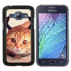 Selkirk Americano de Pelo Corto Naranja- Metal de aluminio y de plástico duro Caja del teléfono - Negro - Samsung Galaxy J1 / J100