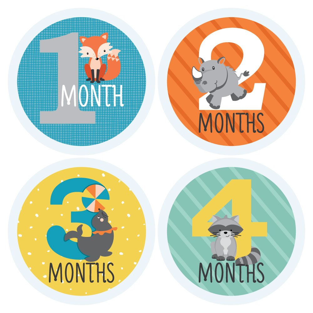 Zoo Animals - Baby Monthly Sticker Set - Baby Shower Gift Ideas - 12 Piece by Big Dot of Happiness (Image #2)
