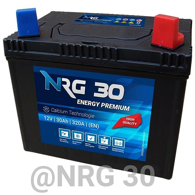 NRG Starter batería 30 Ah tráctor Segadora Cortacésped batería ...