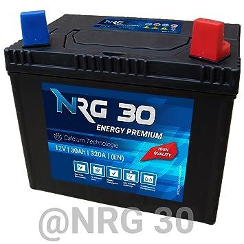 NRG Starter batería 30 Ah tráctor Segadora Cortacésped ...