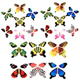 Gmai Flying Butterfly - Classic Wind Up Swallowtail Butterfly - Close Up Magic Set Of (20p)