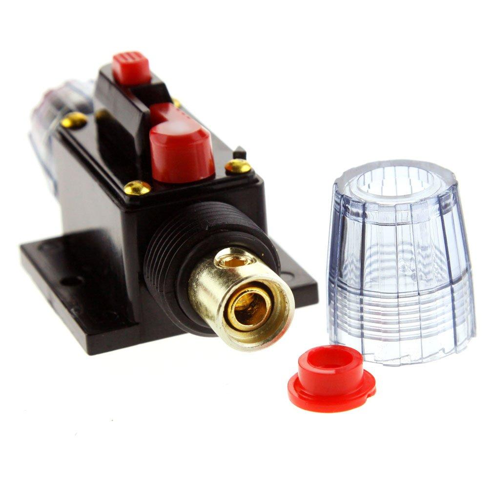 60A 12V Halterung Automatiksicherungshalter Sicherung Halter