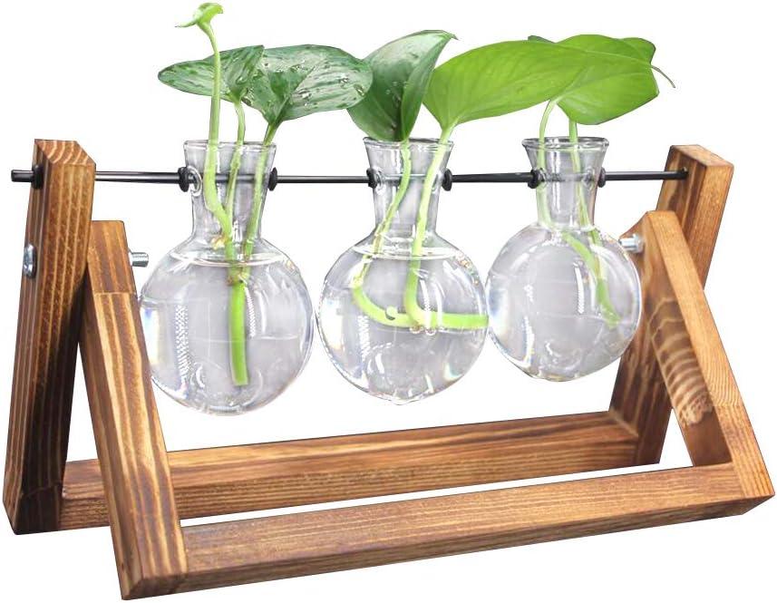 D/écoration de Bureau Maison Ampoule de Verre Pot de Fleurs avec Support en Bois et M/étal Tige pour Plantes Hydroponiques DEDC Vases Ampoule en Verre 1 Terrarium