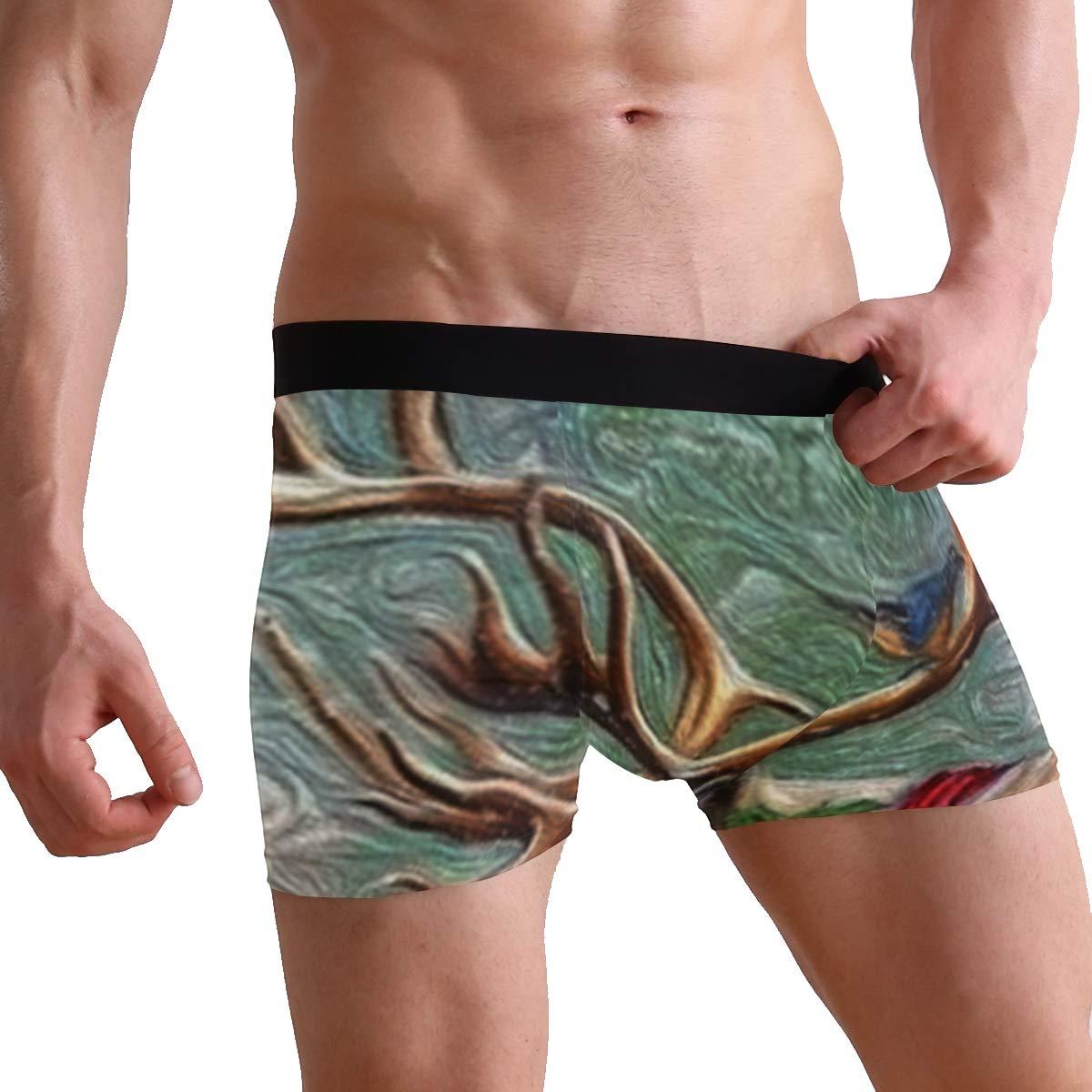CATSDER Christmas Reindeer Boxer Briefs Mens Underwear Pack Seamless Comfort Soft