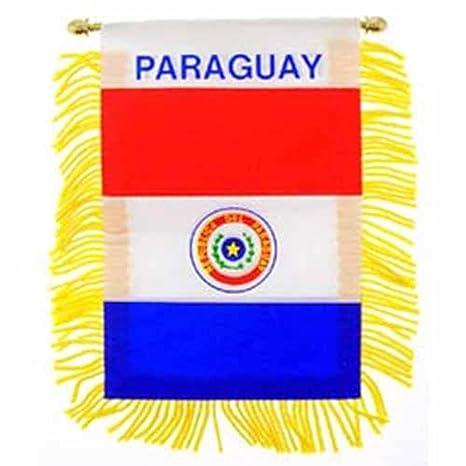 Paraguay bandera de Mini pancarta (3 en x 5 en: Amazon.es: Hogar
