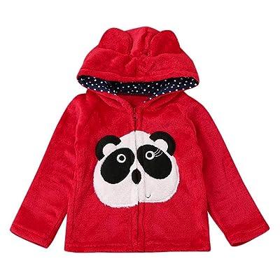 Coerni Premium Cute Cotton Infant Baby Zipper Hooded Coat - 4 Color