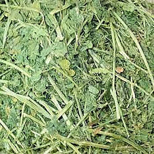 Small Pet Select Alfalfa Hay Pet Food, 2 Lb.