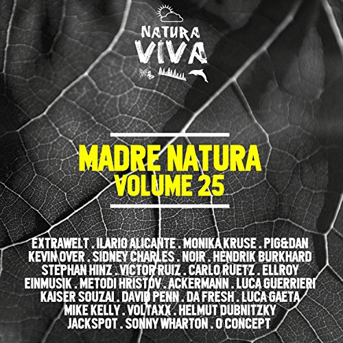 I Am a DJ (Sonny Wharton Remix) (Natural Wharton)