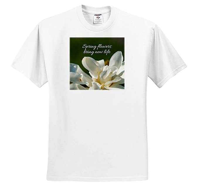 Amazoncom 3drose Alexis Design Sayings About Spring Spring