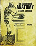 img - for The Accidence of Anatomy: A Bespoke Lab Manual book / textbook / text book