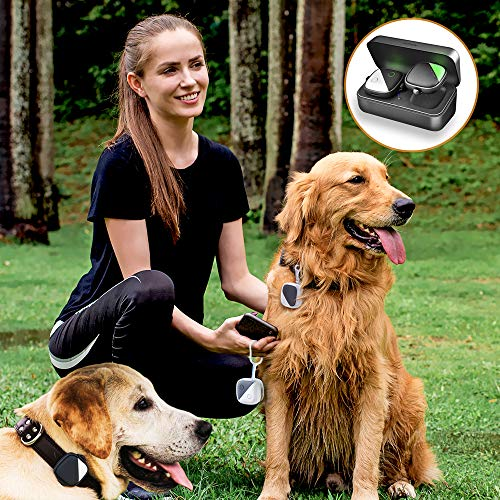 PETFON Pet GPS Tracker for 1-3 Dogs Pets,No Monthly Fee,Real-Time Tracking Device,Activity Monitor from PETFON