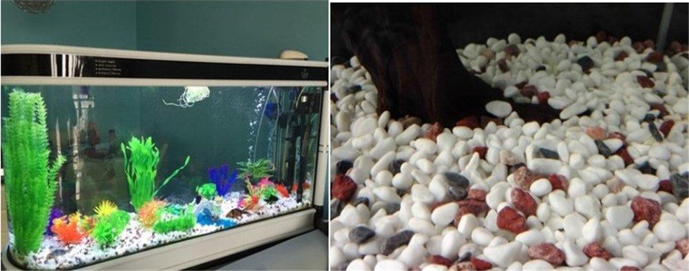 TELLM - Fondo para acuario, de mármol, color blanco, 400 g: Amazon.es: Hogar