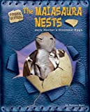 img - for The Maiasaura Nests: Jack Horner's Dinosaur Eggs (Fossil Hunters) by Duncan Searl (2006-08-01) book / textbook / text book