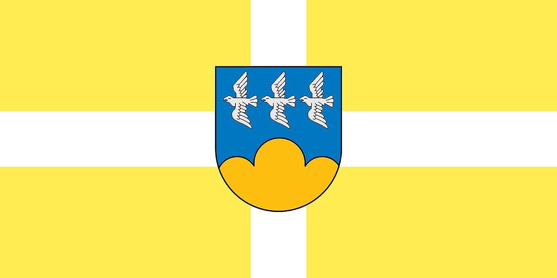 magFlags Bandera Large Smiltene | City of Smiltene, Latvia | Smiltenes pils?tas | Bandera Paisaje | 1.35m² | 80x160cm: Amazon.es: Jardín