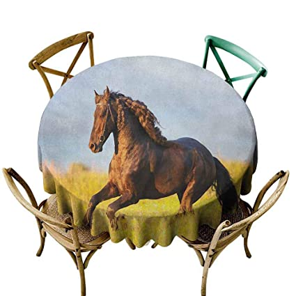 Miraculous Sunnyhome Spillproof Tablecloth Horses Friesian Horse With Mane Gallops In Meadow Equestrian Mystery Vitality Horse Yellow Brown Blue Table Cover For Pabps2019 Chair Design Images Pabps2019Com