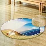 Round Rugs for Bedroomlight bulb and solar panels Circle Rugs for Living Room-Round 59''