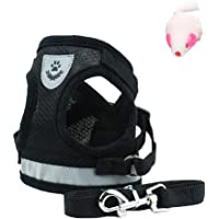 Luna Pets Cat Harness and Leash Set for Walking, Escape Proof Soft Adjustable Vest Harnesses for Cats Or Dogs, Easy…