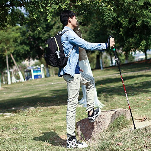 OUTRY Collapsible Trekking Pole, Walking/Hiking Stick – Ultralight 7050 Aluminum Alloy (1 Single Pole)