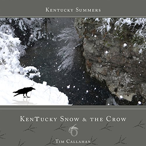 Bargain Audio Book - Kentucky Snow and the Crow