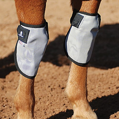 Classic Equine Magntx Knee Wraps by Classic Equine