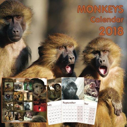 - Monkeys calendar 2018