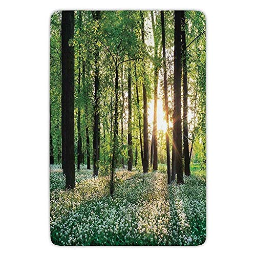 K0k2t0 Bathroom Bath Rug Kitchen Floor Mat Carpet,Farm House Decor,Sunny Forest Wild Garlic Enchanting Wildflowers Blossoms Landscape Scene,Green White,Flannel Microfiber Non-Slip Soft Absorbent