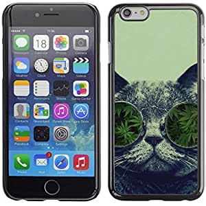 """A-type Colorful Printed Hard Protective Back Case Cover Shell Skin for 5.5"""" iPhone 6 Plus ( Marijuana Funny Cat )"""