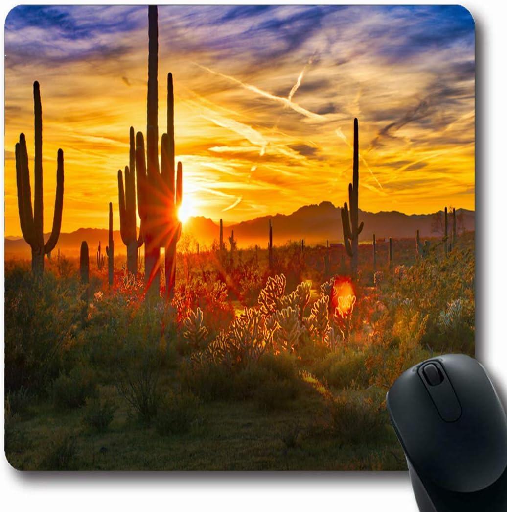 Alfombrillas de ratón Desierto Arizona Saguaros Puesta de sol Sonora Cerca de Phoenix Parques naturales Cactus Sol EE.UU. Cañón Cholla Diseño Forma oblonga 7,9 x 9,5 pulgadas Alfombrilla antideslizant: Amazon.es: Electrónica