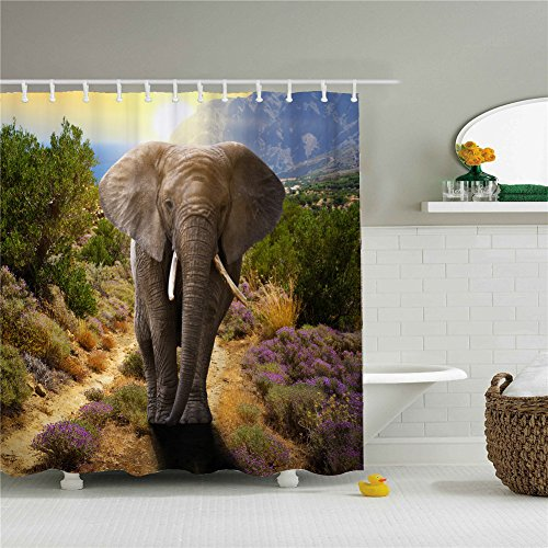 66X72 Inch Polyester 100% Waterproof Asian Elephant Shower Curtain