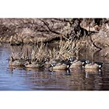 Avery Hunting Gear PG Blue-Winged Teal (1/2 Dozen)