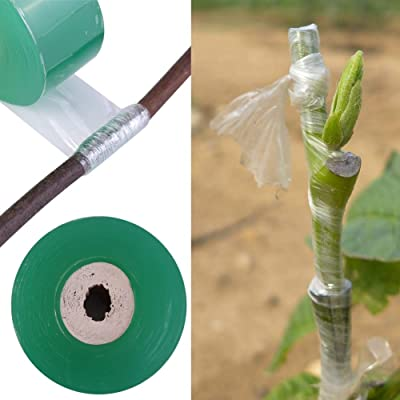 Grafting Tape - Plant Repair Tape 100m Long Self-Adhesive Fruit Tree Seedling Nursery Grafting Tape Plants Gardening Tools New,Green: Home & Kitchen