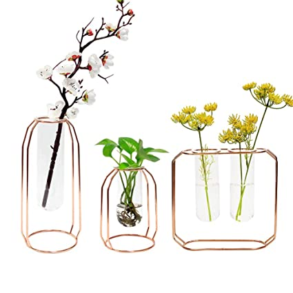 981269748089 GUOLIAN Hydroponic Vase Home Décor - Vase for Flowers   Planter Decorations  Container - Rose Gold