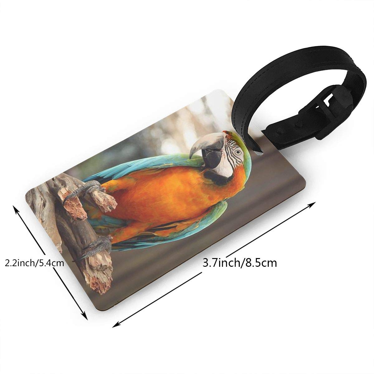 Parrot Handbag Tag For Suitcase Bag Accessories 2 Pack Luggage Tags