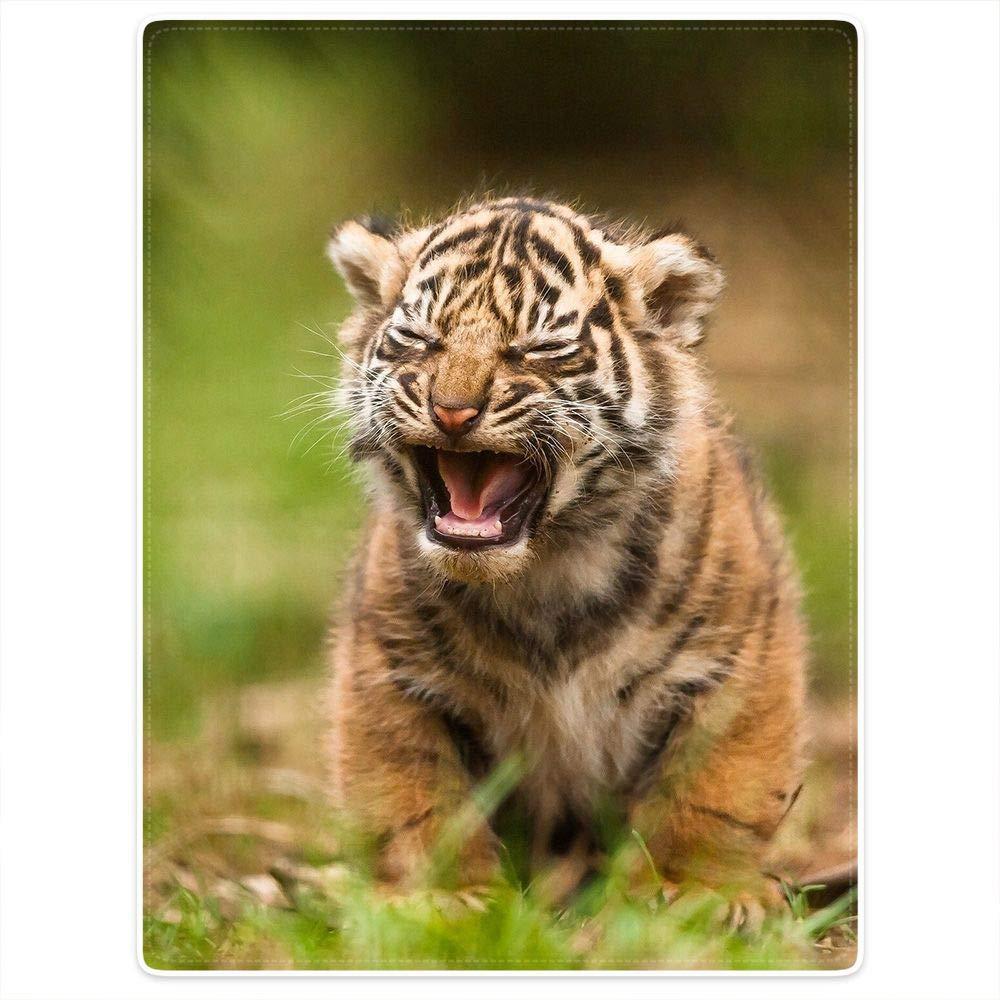 HommomH 60¡Á80 Inch Tiger Cub Soft Blanket Fluffy Cozy Throw Keep Warm Easy Care Bedding Kids Sofa Squinting Sad Expression Cute by HommomH
