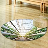Round Rug Kid Carpetvegetables plants growing in a greenhouse witch made from metal profile Home Decor Foor Carpe-Round 31''