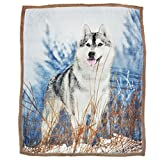 Brandream Dog Pattern Fleece Blanket Boys Throw Blanket 51 By 63 Inch Blankets,Alaskan Malamute