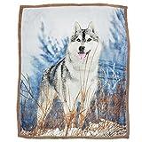 Brandream Dog Pattern Fleece Blanket Boys Throw Blanket 51 By 63 Inch Blankets,Alaskan Malamute