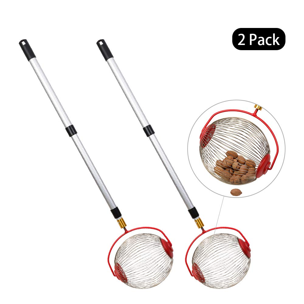 Cchainway Rolling Nut Harvester Ball Picker Stainless Steel Adjustable Nut Gatherer Adjustable Collect Walnuts, Pecans, Crab Apples, Nerf Darts and Small Fruit Objects 1'' to 3'' in Size (2 Pack) by Cchainway