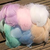 Augoog - 500 plumas de ganso naturales, multicolor