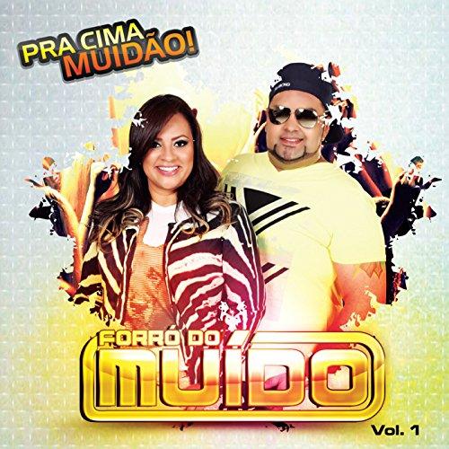 musicas mp3 forro do muido 2013