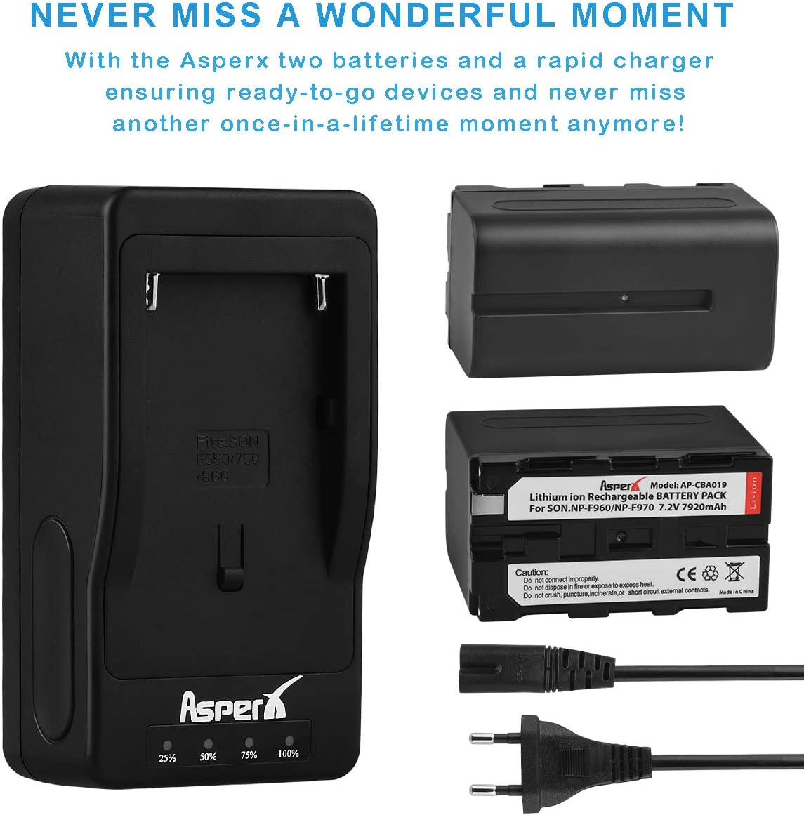 2 Pack Replacement Battery and Fast Charger for Sony DCR-VX2100 HDR-AX2000 FX1 FX7 FX1000 HVR-HD1000U V1U Z1P Z1U Z7U HXR-MC2000U FS100U FS700U and LED Video Light Asperx NP-F960//NP-F970