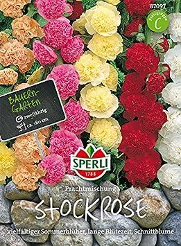 Sperli Stockrosen Prachtmischung | vielfälltiger Sommerblüher | zweijährig | Päckchen Samen