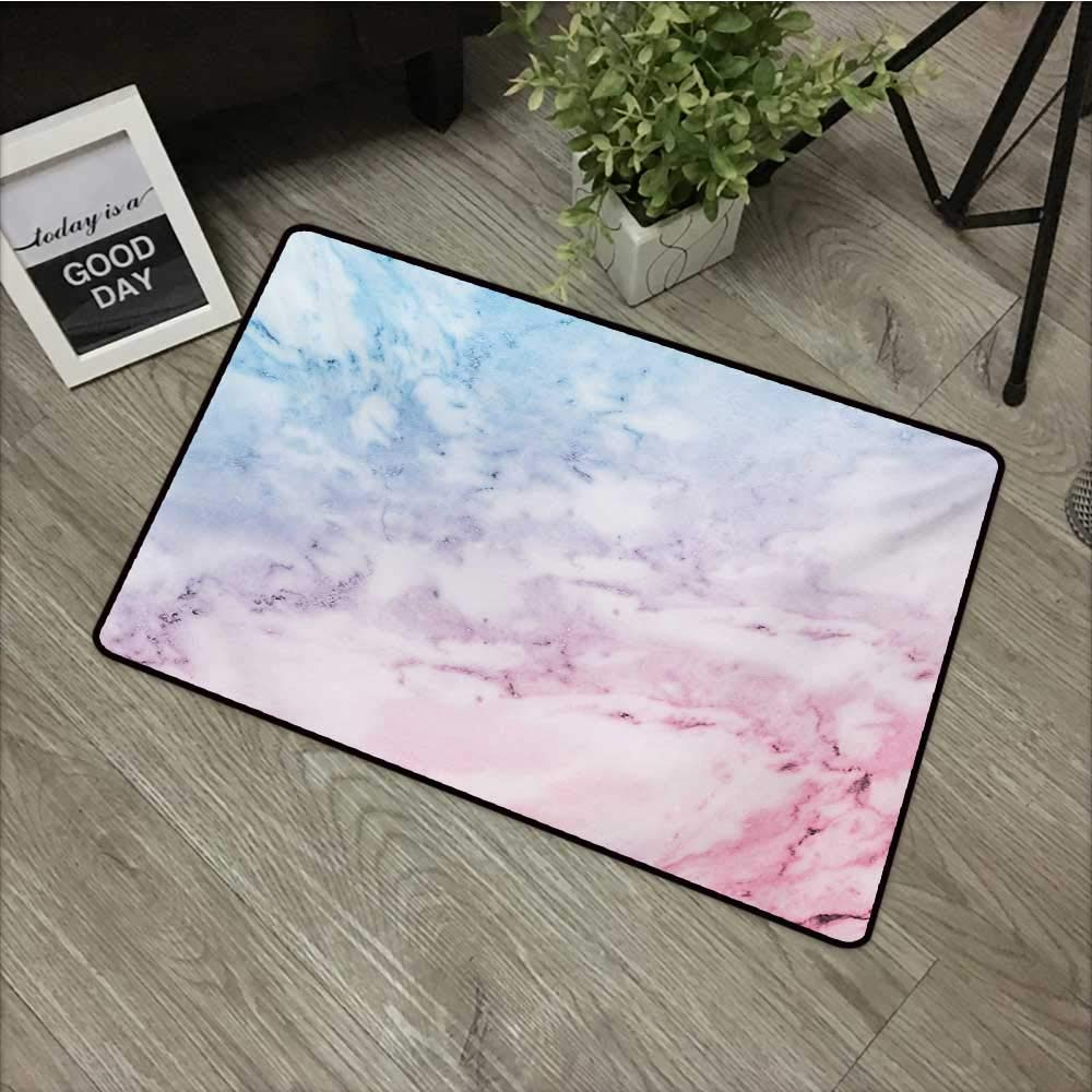 Interior mat W16 x L24 INCH Marble,Pastel Toned Cloudy Hazy Crack Lines Stained Antique Shabby Chic Design,Pale Blue Baby Pink Natural dye printing to protect your baby