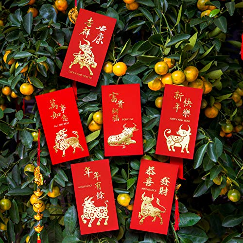 Lunar New Year Celebration Supplies