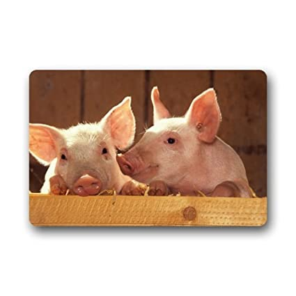 Amazon Shirleys Door Mats Pig Custom Rubber Doormat Front