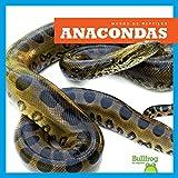 Anacondas (Anacondas) (Bullfrog Books en Espanol: Mundo de reptiles (Reptile World)) (Spanish Edition)