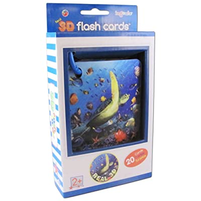 Ingenio Real 3D Flash Cards Marine Animals: Toys & Games